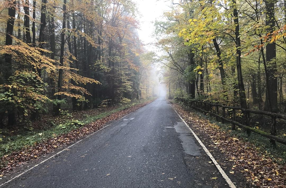 estado-carreteras