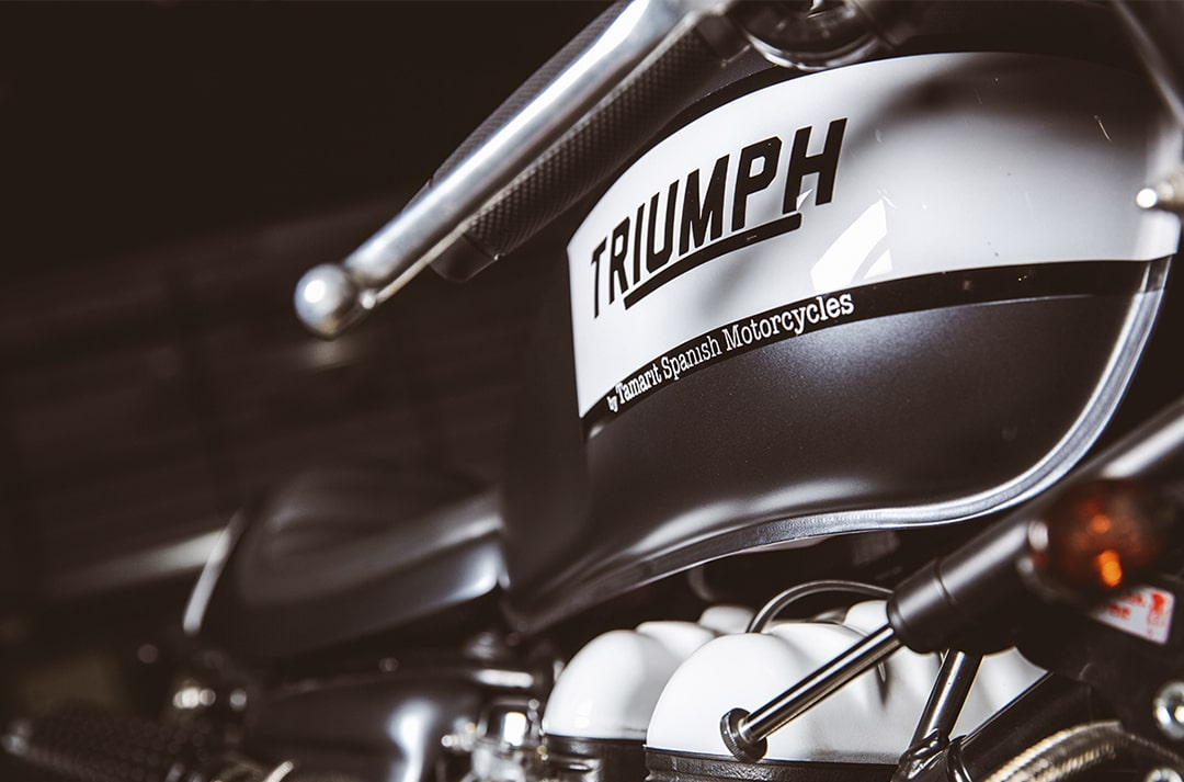 triumph-color-tamarit-min